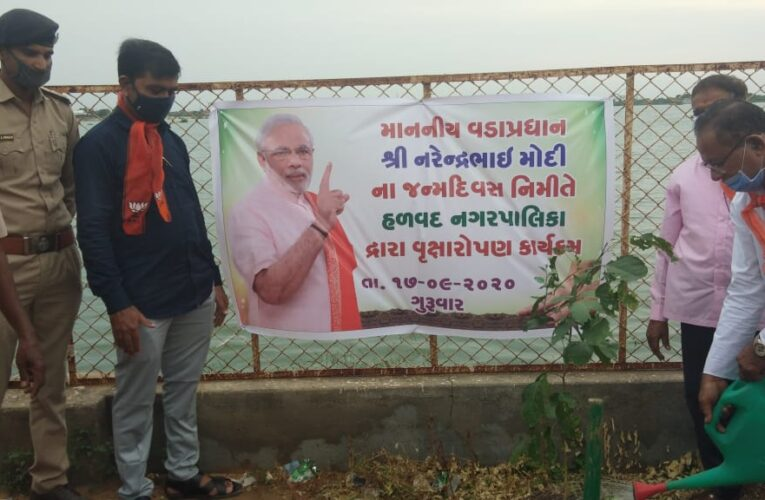 Halvad-Morbi વડાપ્રધાન નરેન્દ્રભાઈ મોદી જન્મદિવસ નિમિત્તે હળવદ નગરપાલિકા દ્વારા વૃક્ષારોપણનું આયોજન કરાયું.
