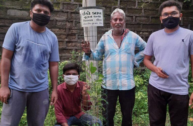 Gondal-Rajkot ક્લીન ગોંડલ ગ્રીન ગોંડલ ઇકો કલબ દ્વારા વૃક્ષ વાવેતર કરવામાં આવ્યું.