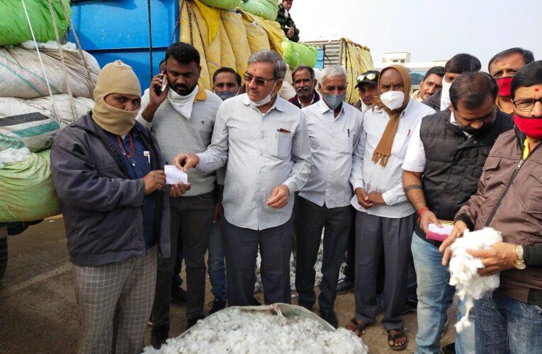 Halvad-Morbi હળવદ માર્કેટ યાર્ડ ખાતે આજથી સી.સી.આઈ દ્વારા કપાસ ખરીદીનો પ્રારંભ કરાયો.